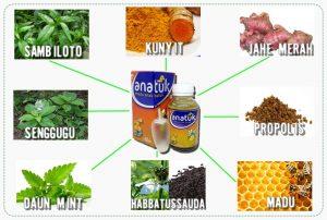 Obat Batuk Herbal Untuk Anak
