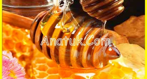 khasiat madu untuk batuk anak