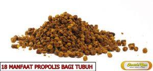 manfaat propolis bagi tubuh