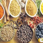 Obat Herbal Batuk Berdahak Untuk Keluarga
