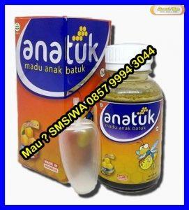 Distributor Obat Herbal Bogor