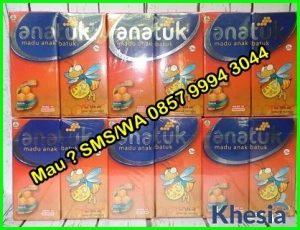 Distributor Obat Herbal Jogja