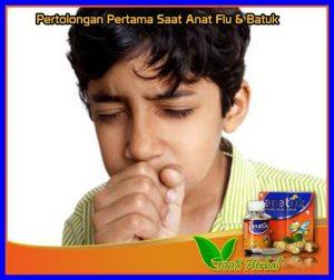 Obat Batuk Tradisional Untuk Anak 2 tahun