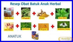 Obat Batuk Herbal Untuk Bayi 2 Tahun