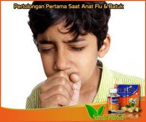Obat Tradisional Flu Dan Batuk Berdahak