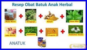 Obat Batuk Herbal Untuk Anak Anak