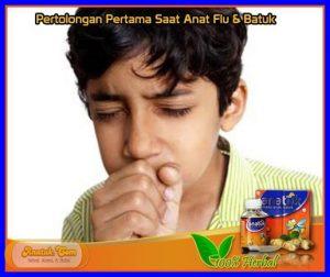 Obat Pilek Demam Anak