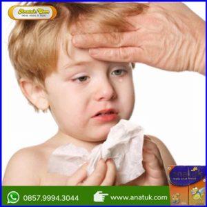 Obat Flu Anak Dibawah 1 Tahun