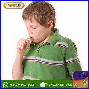 Obat Untuk Flek Paru Pada Anak