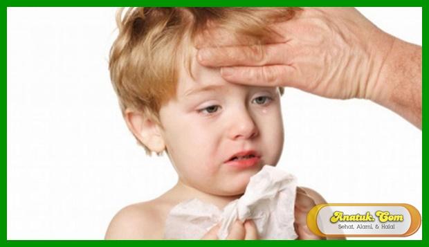 obat tradisional batuk pilek bayi