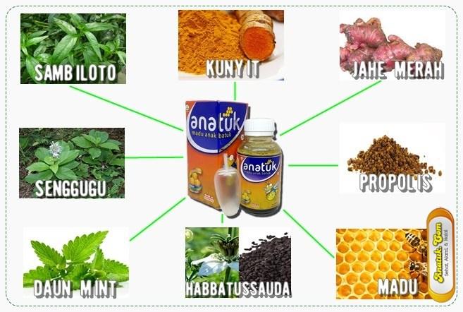obat herbal untuk batuk